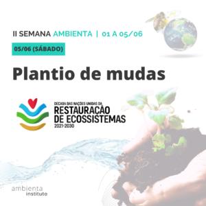 05.06 - Plantio